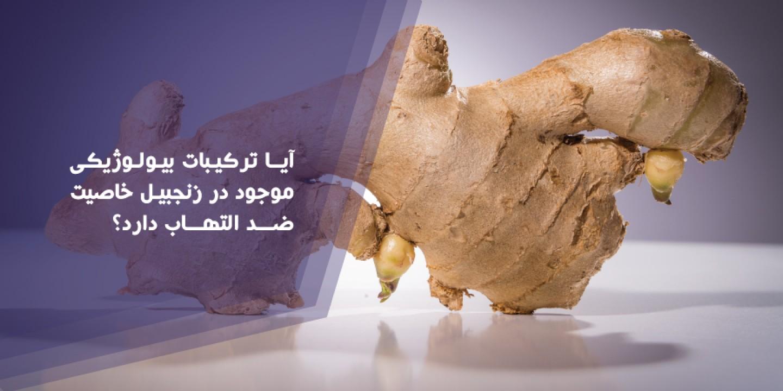 aya_tarkibat_biolozhiki_mojod_dar_zajebil_khasiat_zed_eltehab_darad